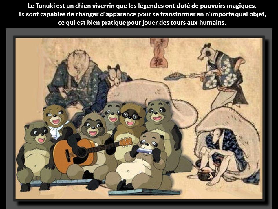 Le Tanuki est un chien viverrin que les légendes ont doté de pouvoirs magiques.