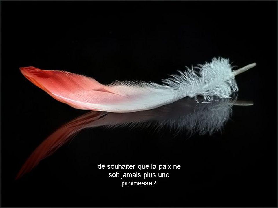 de souhaiter que la paix ne soit jamais plus une promesse