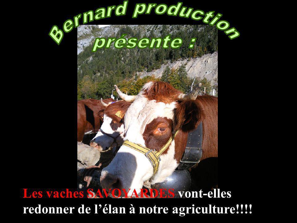 Bernard production présente :