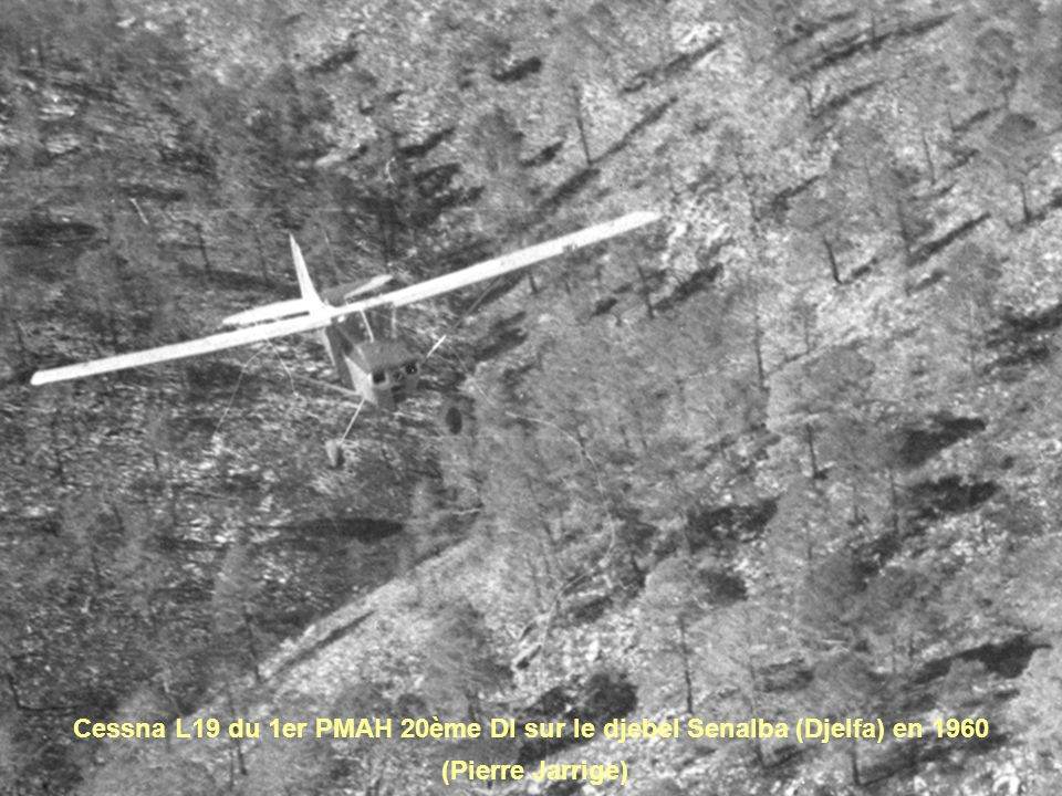 Cessna L19 du 1er PMAH 20ème DI sur le djebel Senalba (Djelfa) en 1960
