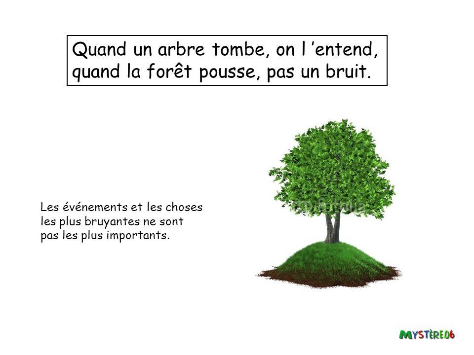 Quand un arbre tombe, on l 'entend, quand la forêt pousse, pas un bruit.