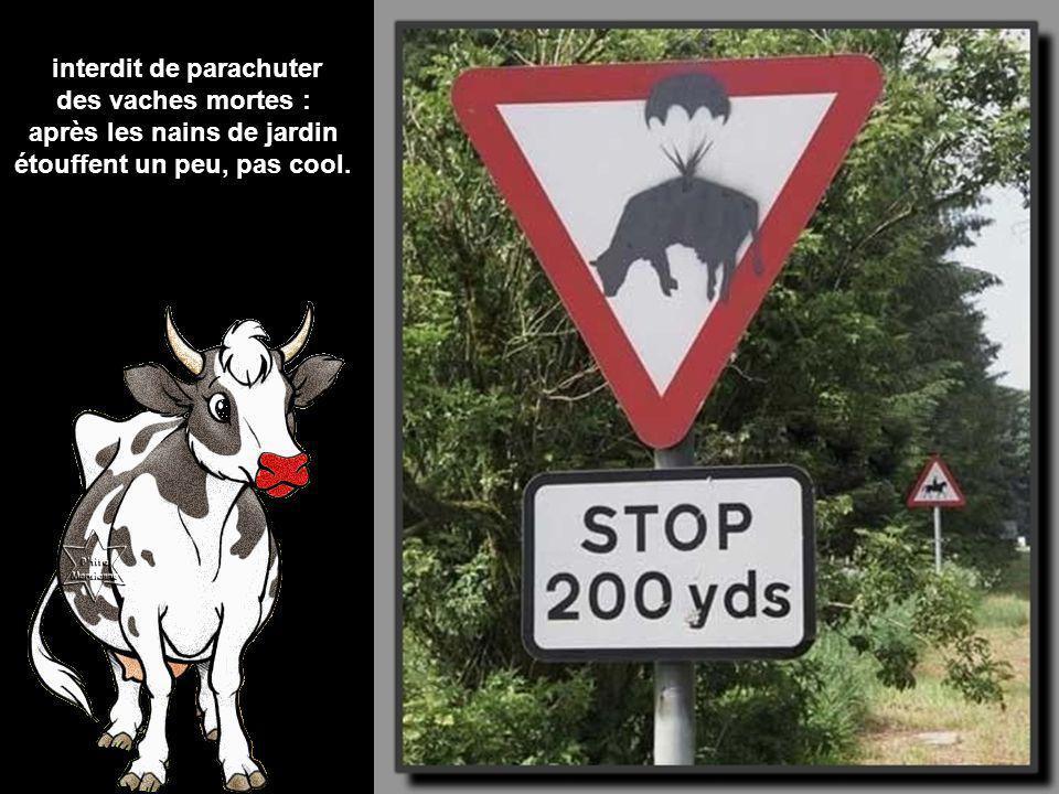 interdit de parachuter des vaches mortes :