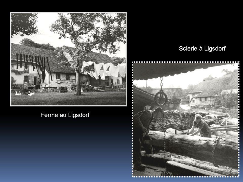Scierie à Ligsdorf Ferme au Ligsdorf