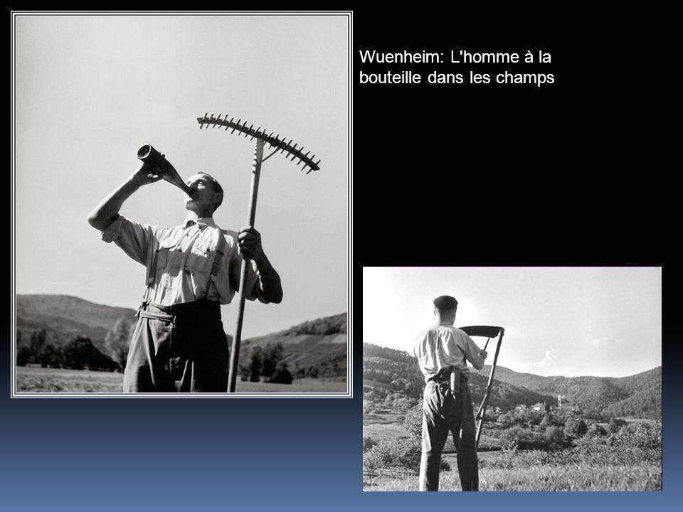 Wuenheim: L homme à la bouteille dans les champs