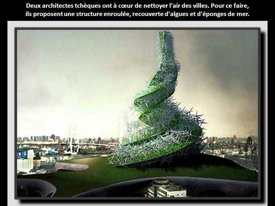 Deux architectes tchèques ont à cœur de nettoyer l air des villes