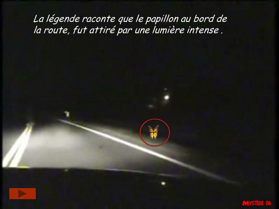 La légende raconte que le papillon au bord de la route, fut attiré par une lumière intense .