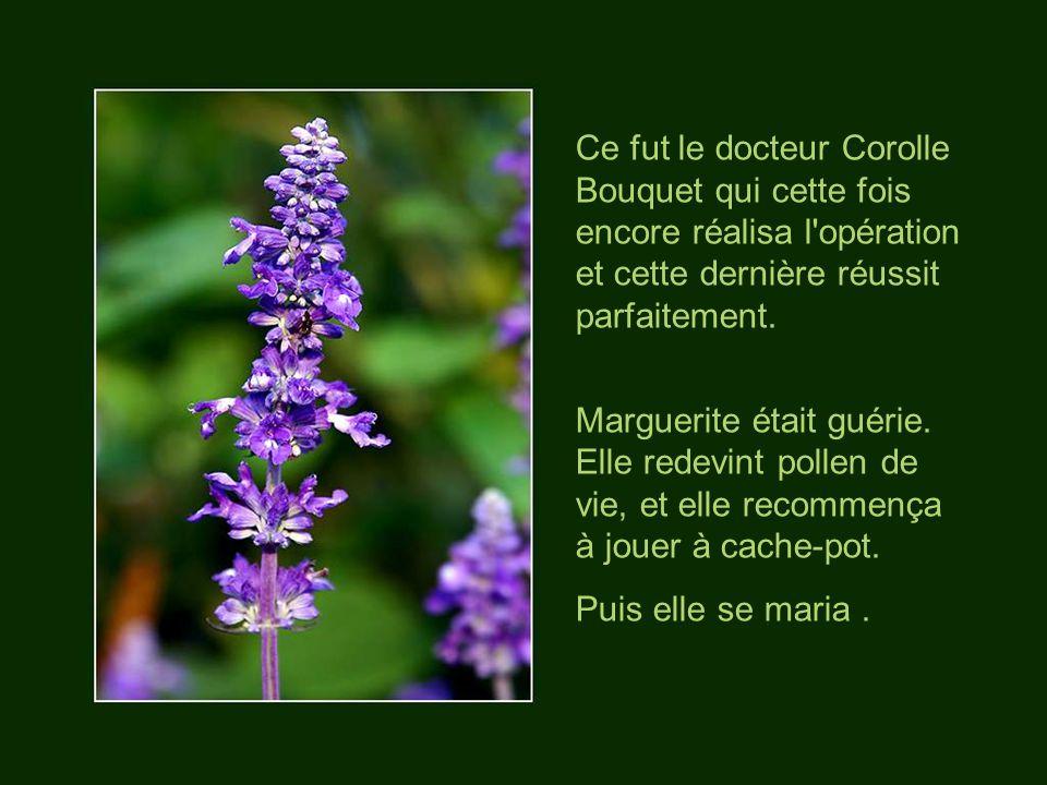 Ce fut le docteur Corolle Bouquet qui cette fois encore réalisa l opération et cette dernière réussit parfaitement.
