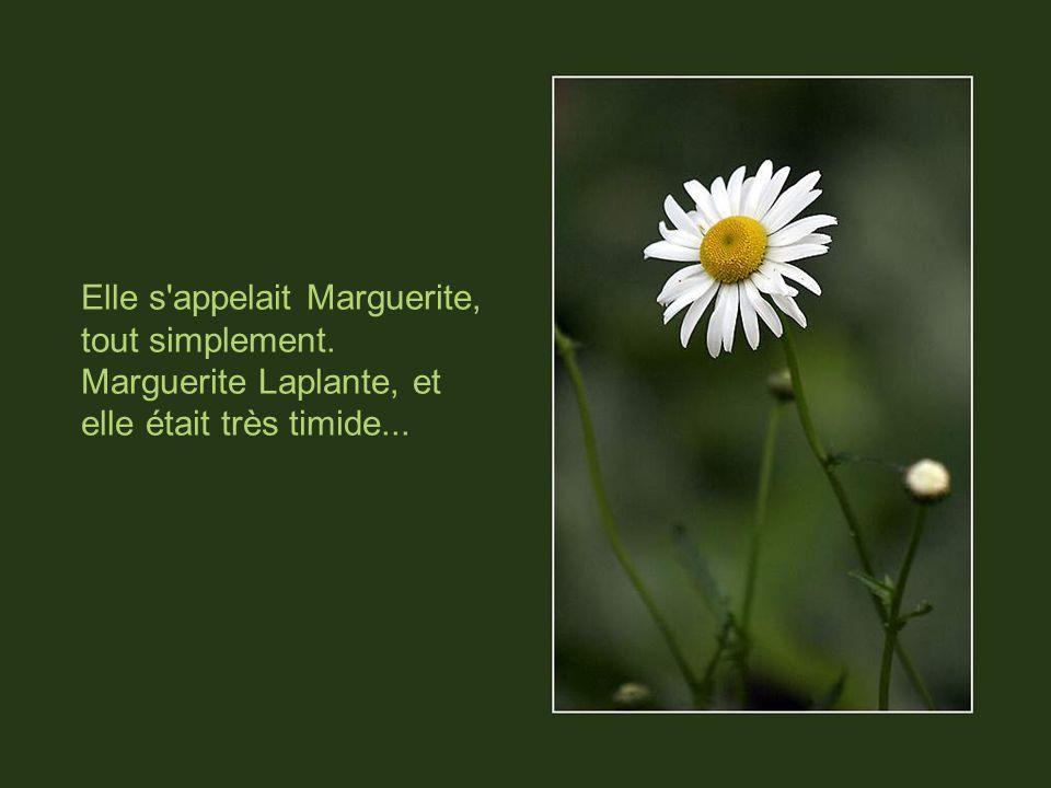 Elle s appelait Marguerite, tout simplement