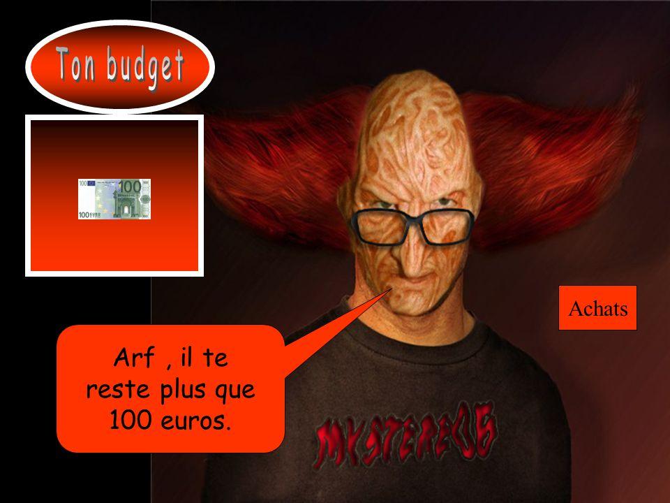 Ton budget Achats Arf , il te reste plus que 100 euros.