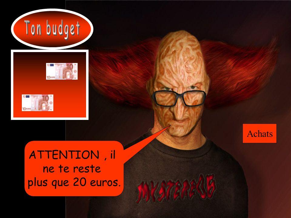 Ton budget Achats ATTENTION , il ne te reste plus que 20 euros.