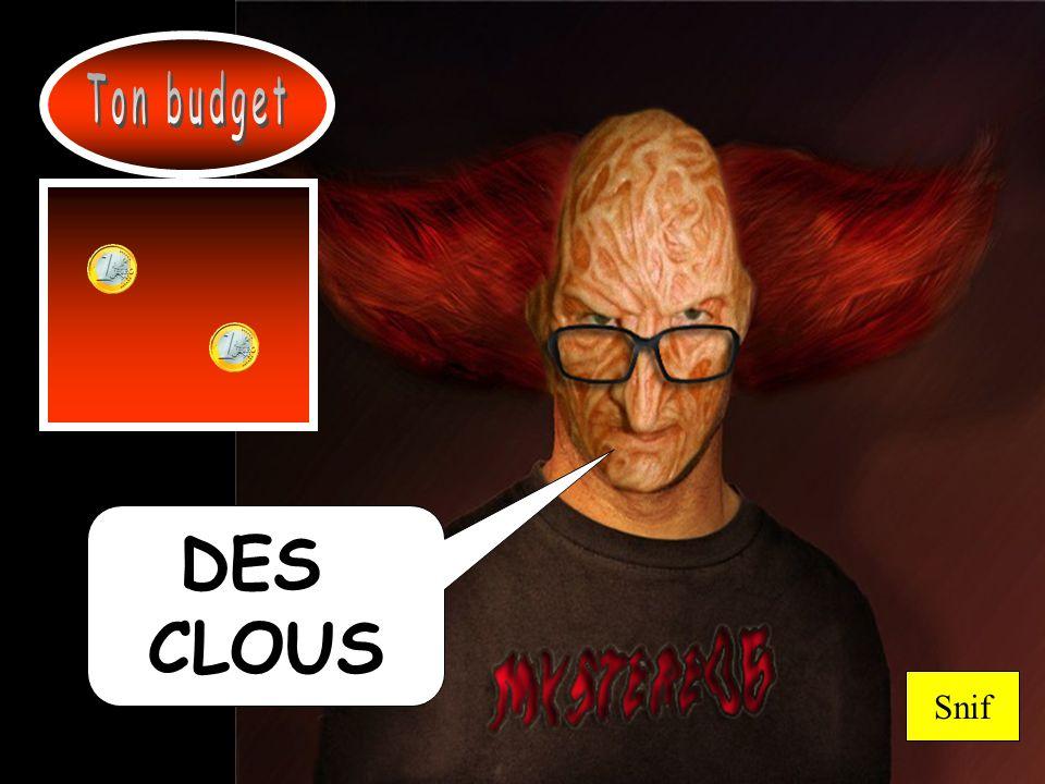 Ton budget DES CLOUS Snif