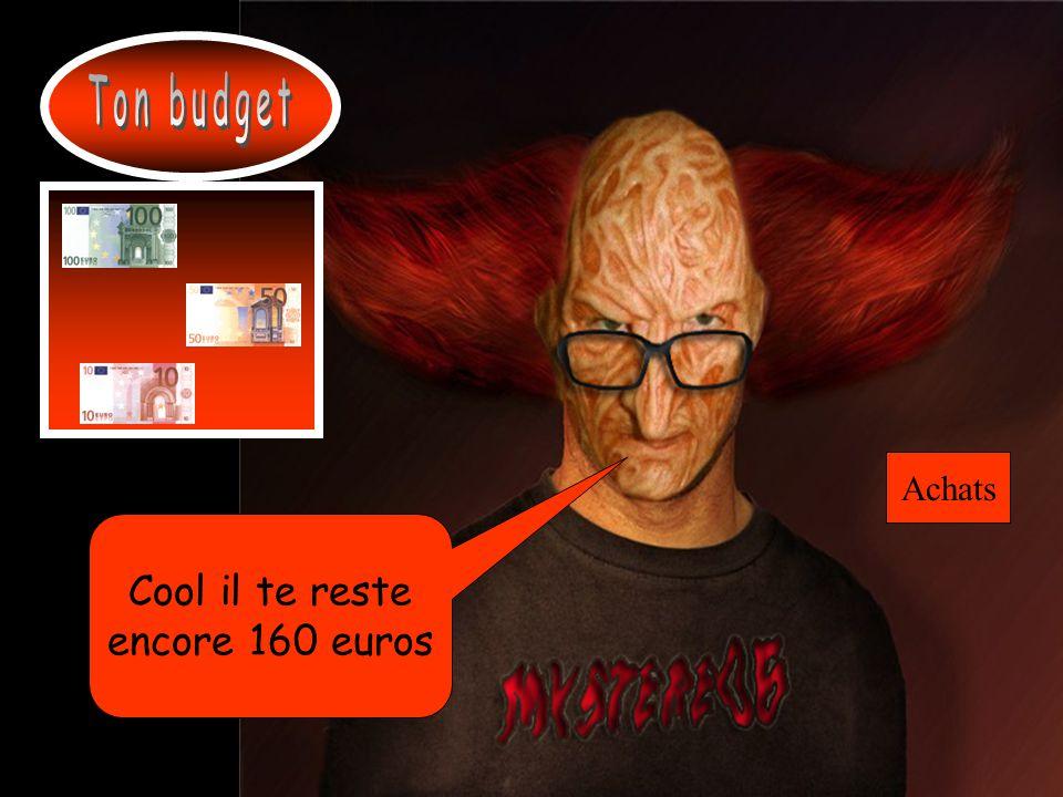 Ton budget Achats Cool il te reste encore 160 euros