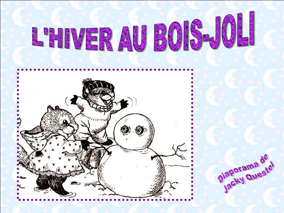 L HIVER AU BOIS-JOLI Diaporama de Jacky Questel