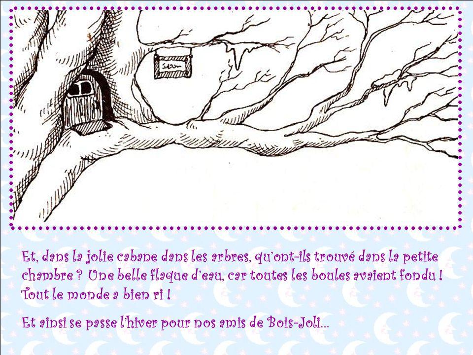 Et, dans la jolie cabane dans les arbres, qu'ont-ils trouvé dans la petite chambre Une belle flaque d'eau, car toutes les boules avaient fondu ! Tout le monde a bien ri !