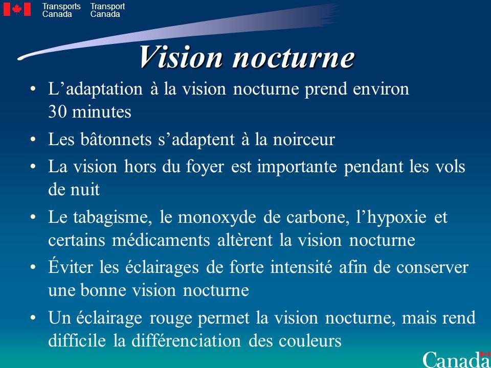 Vision nocturne L'adaptation à la vision nocturne prend environ 30 minutes. Les bâtonnets s'adaptent à la noirceur.