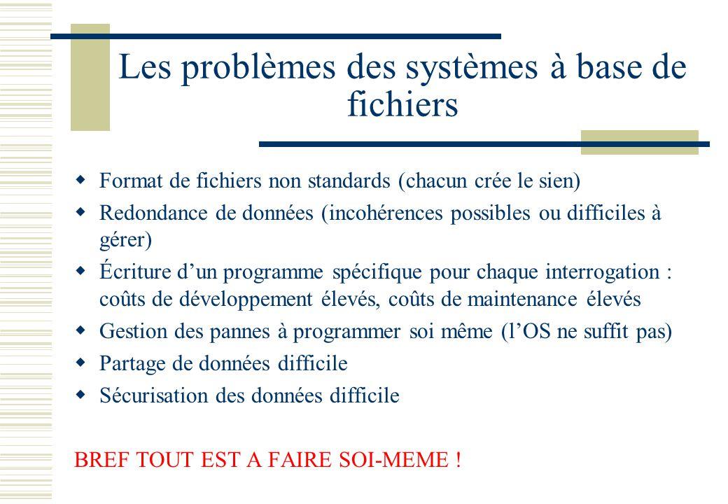Les problèmes des systèmes à base de fichiers