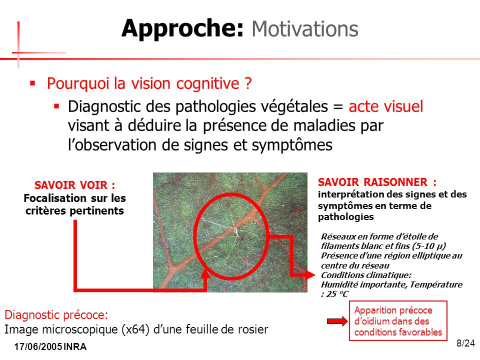 Approche: Motivations