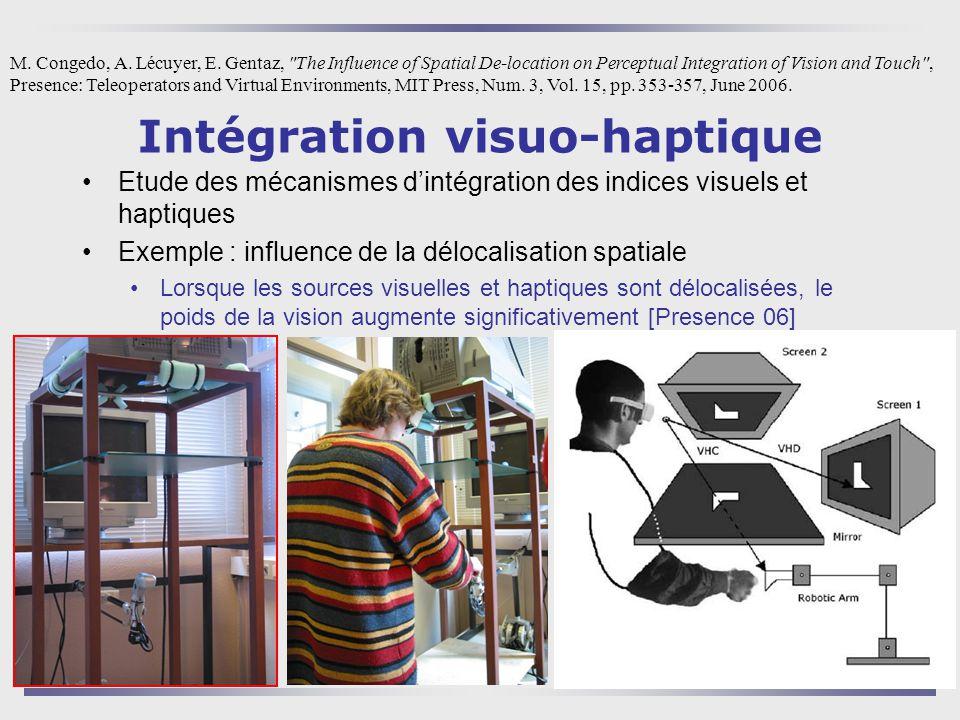 Intégration visuo-haptique