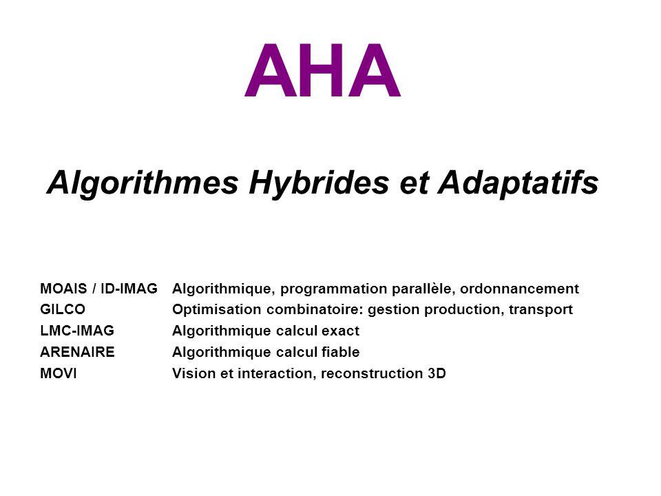 AHA Algorithmes Hybrides et Adaptatifs