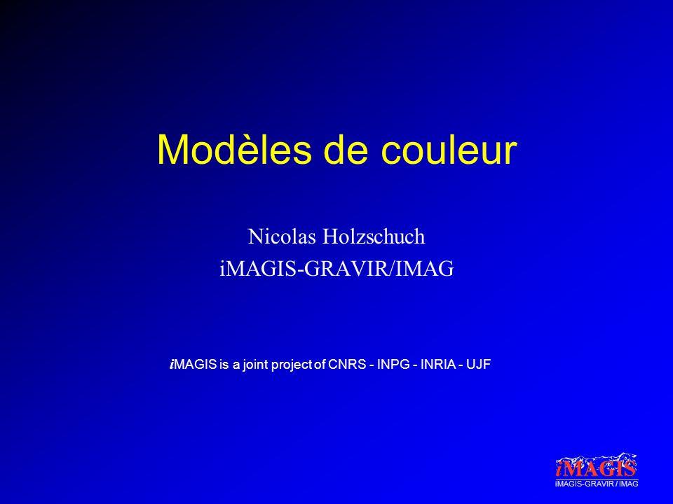 Nicolas Holzschuch iMAGIS-GRAVIR/IMAG