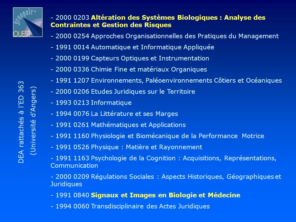 DEA rattachés à l'ED 363 (Université d Angers)