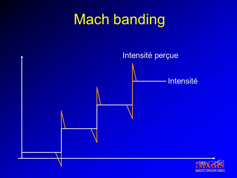 Mach banding Intensité perçue Intensité