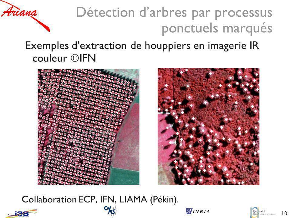 Détection d'arbres par processus ponctuels marqués