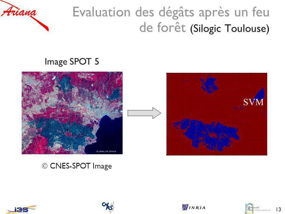 Evaluation des dégâts après un feu de forêt (Silogic Toulouse)