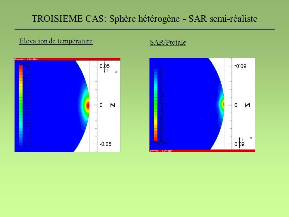 TROISIEME CAS: Sphère hétérogène - SAR semi-réaliste