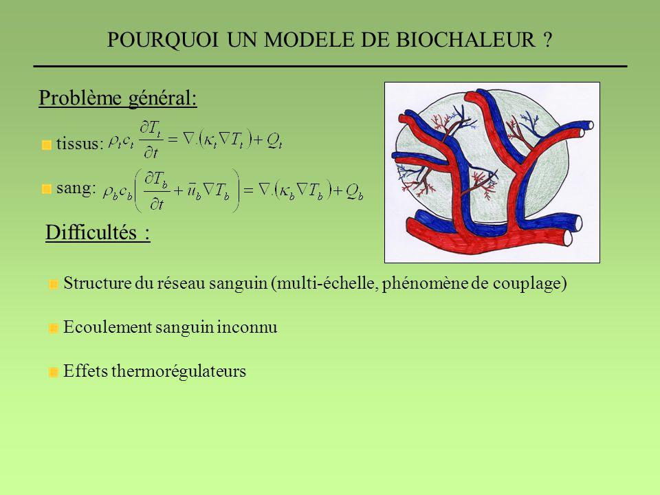 POURQUOI UN MODELE DE BIOCHALEUR