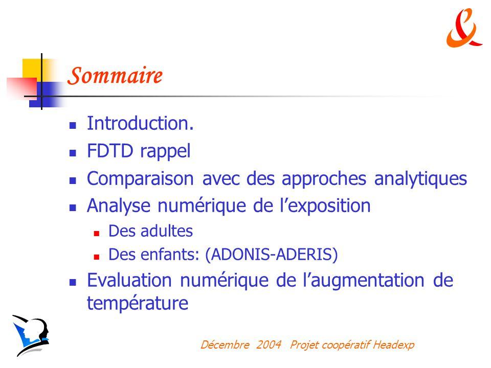 Sommaire Introduction. FDTD rappel
