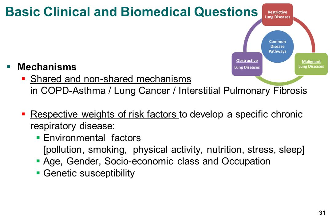 Basic Clinical and Biomedical Questions
