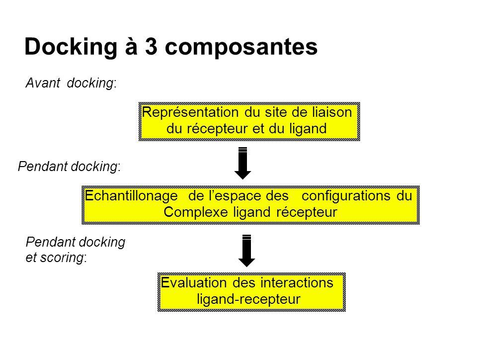 Docking à 3 composantes Représentation du site de liaison