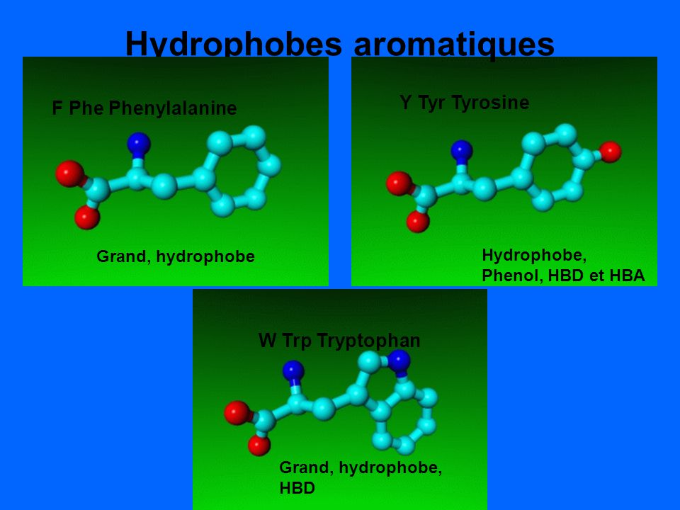 Hydrophobes aromatiques