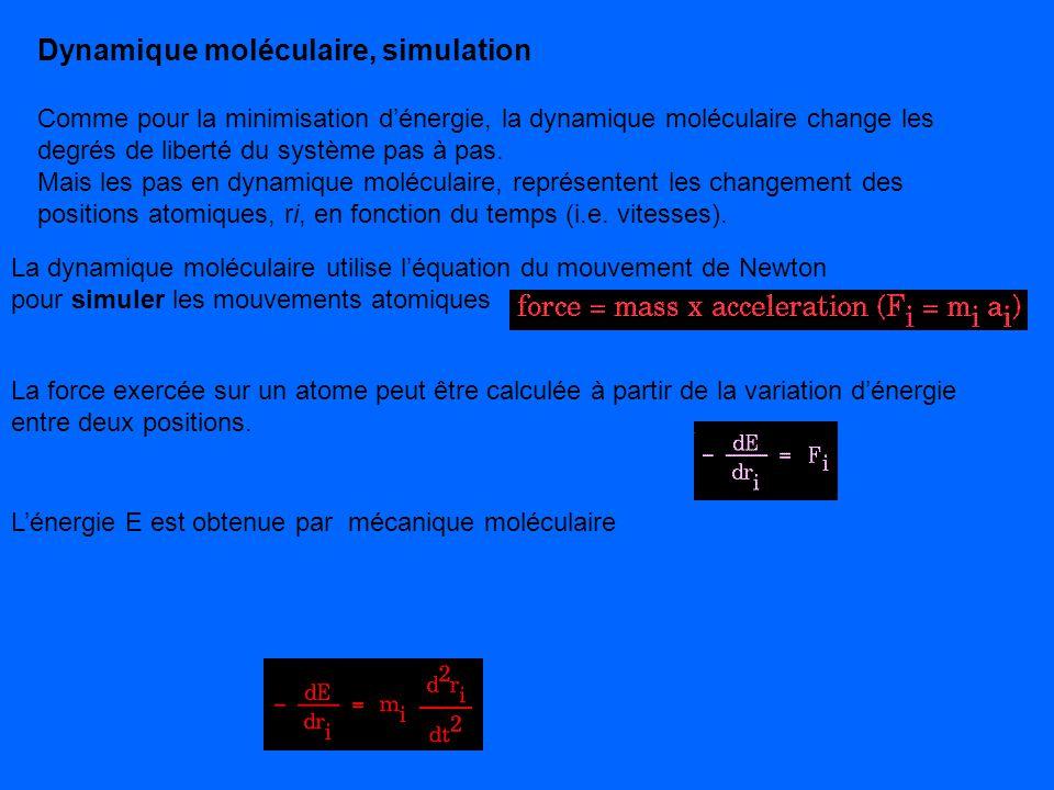 Dynamique moléculaire, simulation
