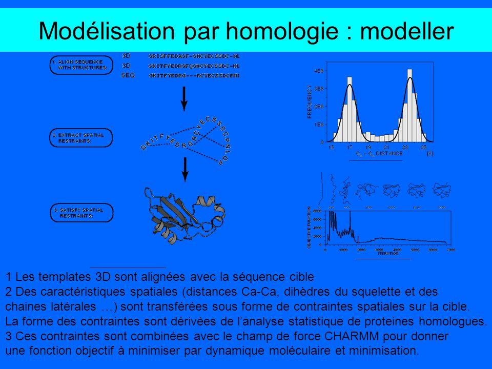 Modélisation par homologie : modeller