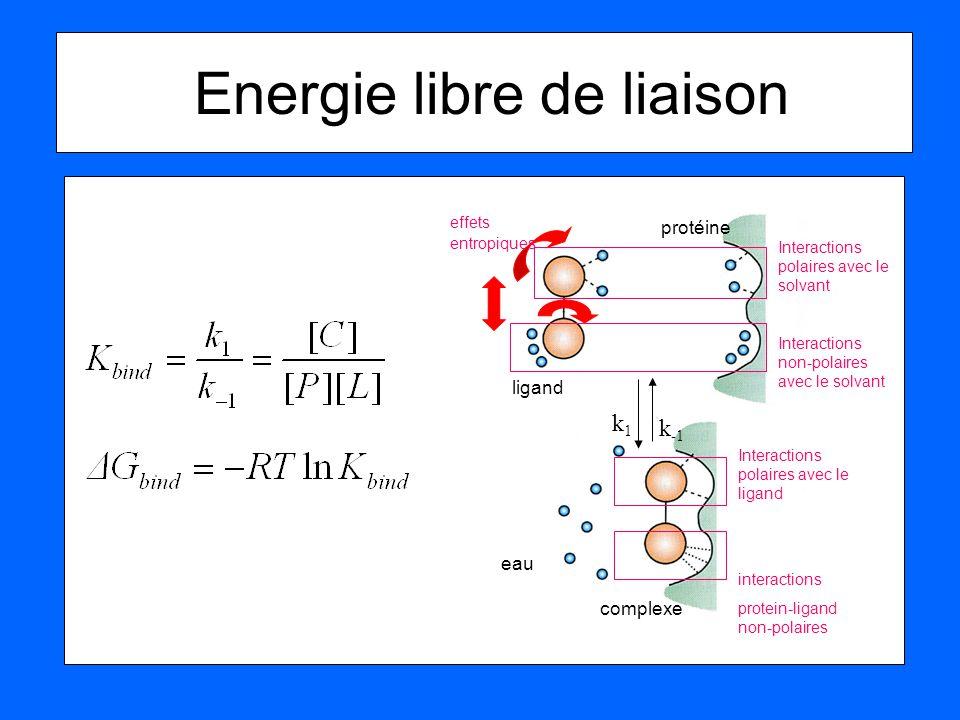 Energie libre de liaison