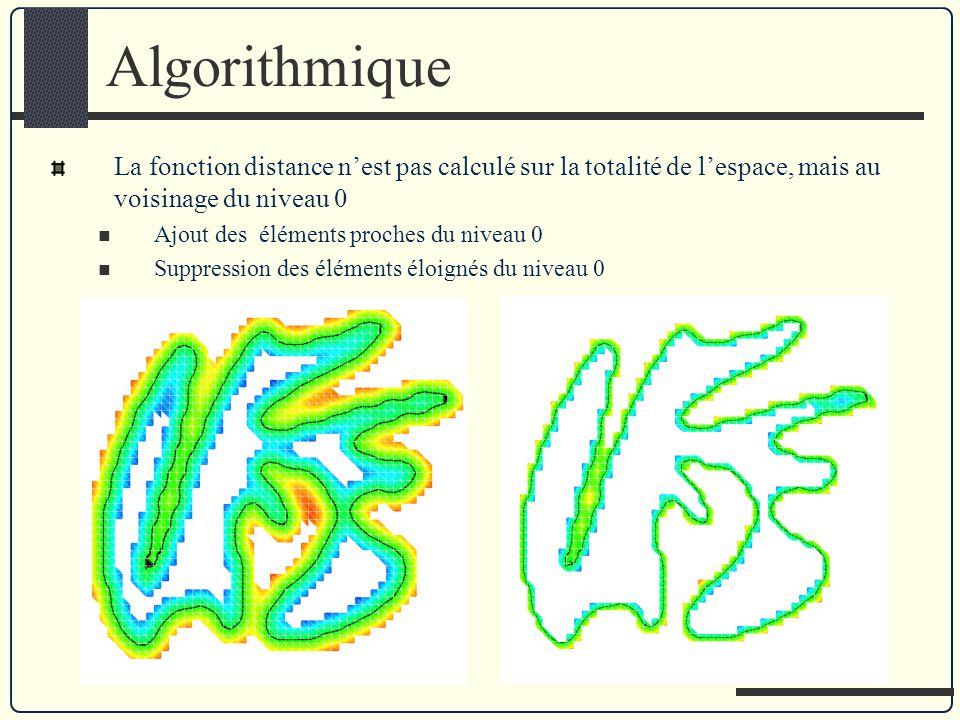 Algorithmique La fonction distance n'est pas calculé sur la totalité de l'espace, mais au voisinage du niveau 0.