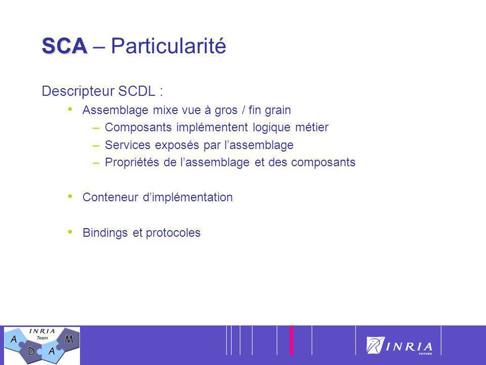 SCA – Particularité Descripteur SCDL :