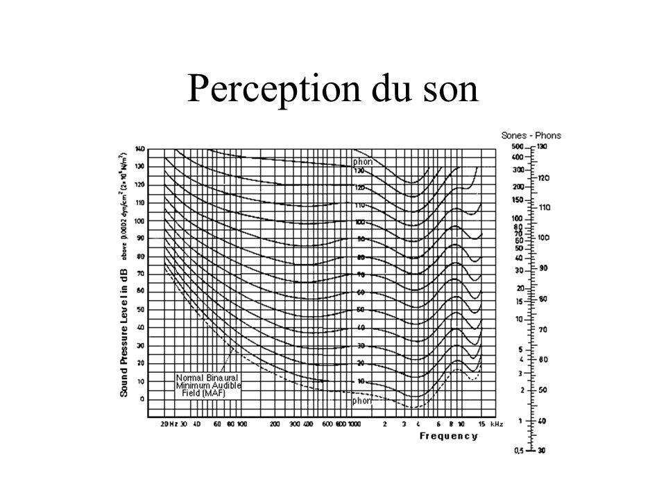 Perception du son