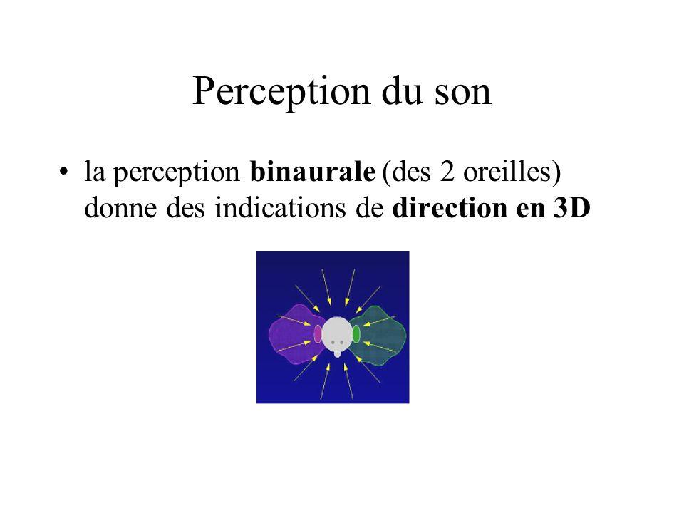 Perception du son la perception binaurale (des 2 oreilles) donne des indications de direction en 3D.