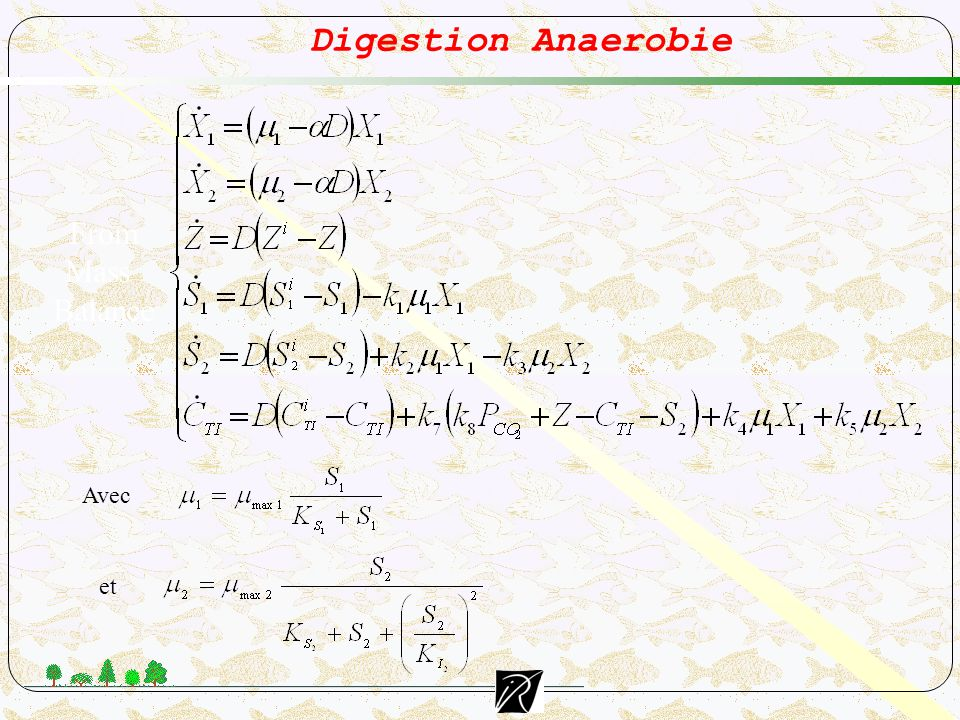 Digestion Anaerobie From Mass Balance Avec et