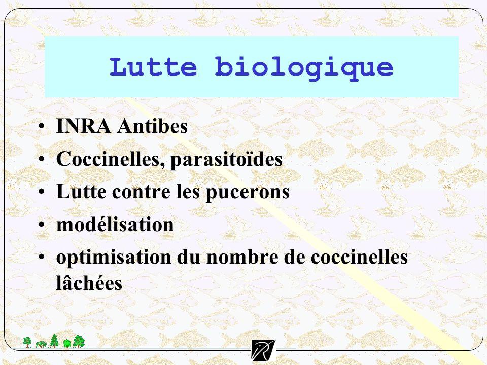 Lutte biologique INRA Antibes Coccinelles, parasitoïdes