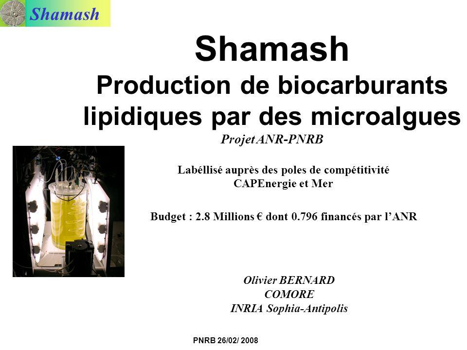 Shamash Production de biocarburants lipidiques par des microalgues