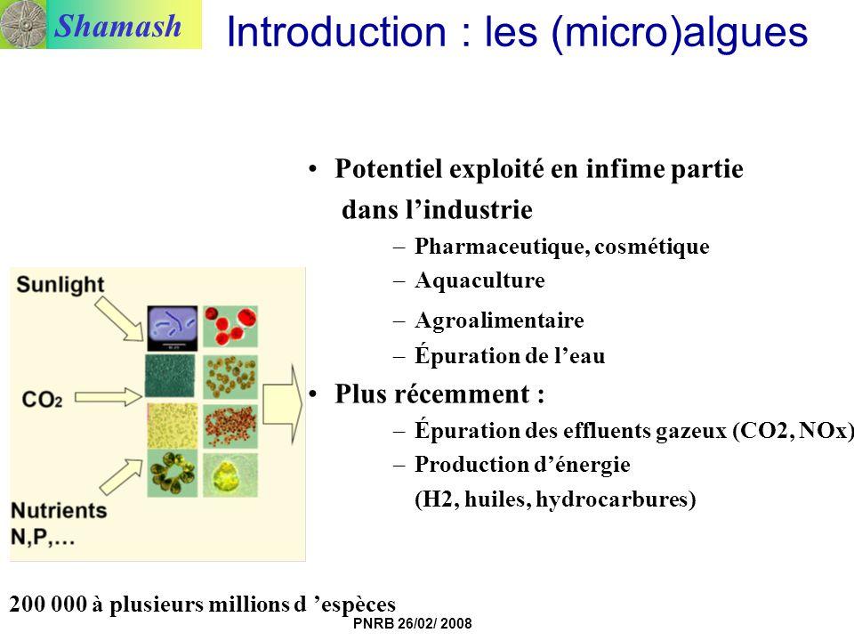 Introduction : les (micro)algues
