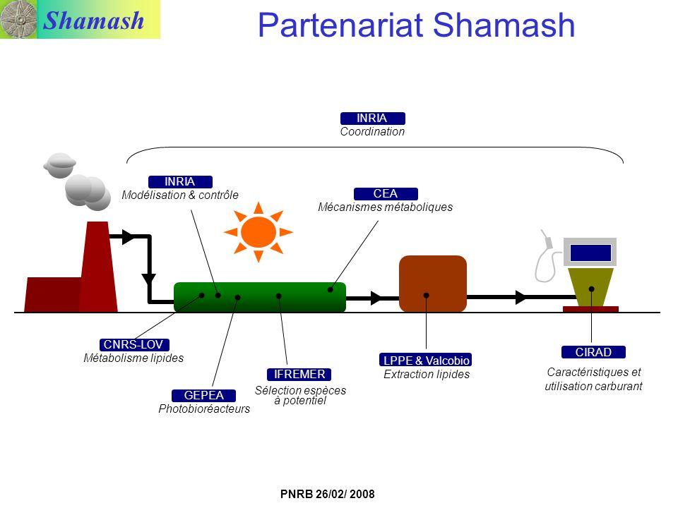 Projet Shamash Partenariat Shamash INRIA Coordination INRIA
