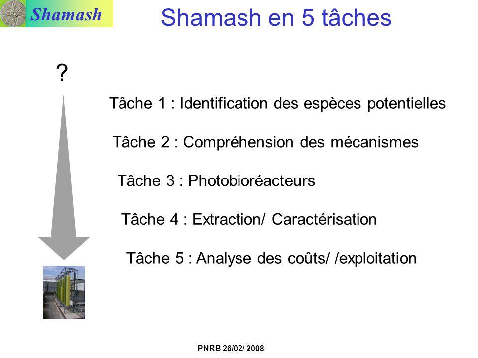 Shamash en 5 tâches Tâche 1 : Identification des espèces potentielles. Tâche 2 : Compréhension des mécanismes.
