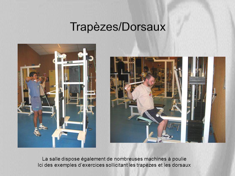 Trapèzes/Dorsaux La salle dispose également de nombreuses machines à poulie.