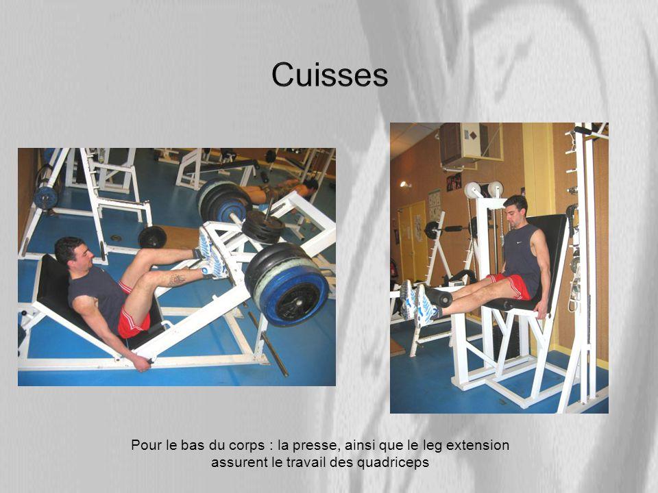 Cuisses Pour le bas du corps : la presse, ainsi que le leg extension