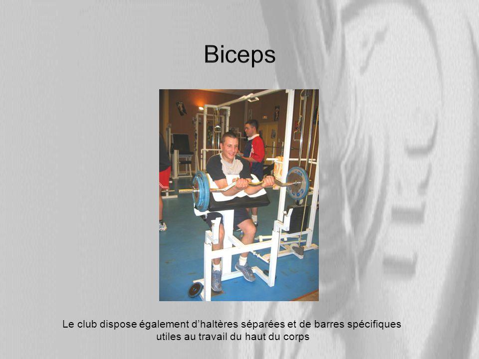 Biceps Le club dispose également d'haltères séparées et de barres spécifiques.